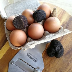 A-grade Truffles are great for infusing. Large pack size Eg. the pair next to eggs, or the Single on table. (Slicer not include